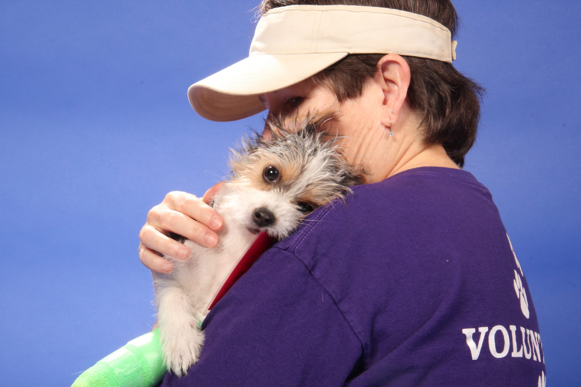 volunteer cuddling a puppy