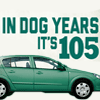 Donate your old car to help shelter pets