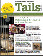 Tails Magazine Cover fall 2010