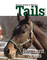 Tails Magazine Cover Winter 2007
