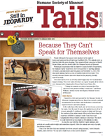 Tails Magazine Cover winter 2011