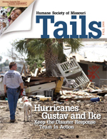 Tails Magazine Cover fall 2008