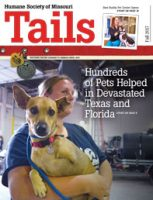HSMO TAILS magazine fall 2017 cover